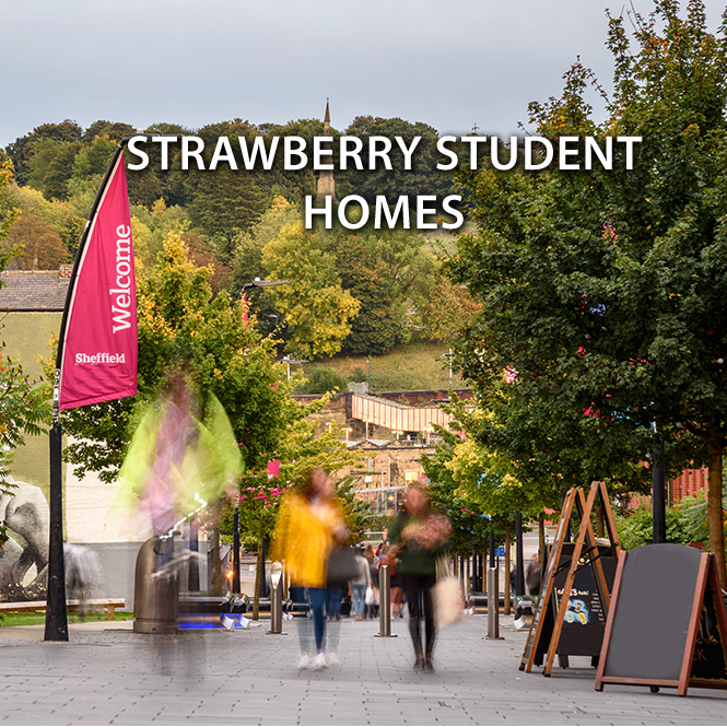 Introducing strawberry student homes